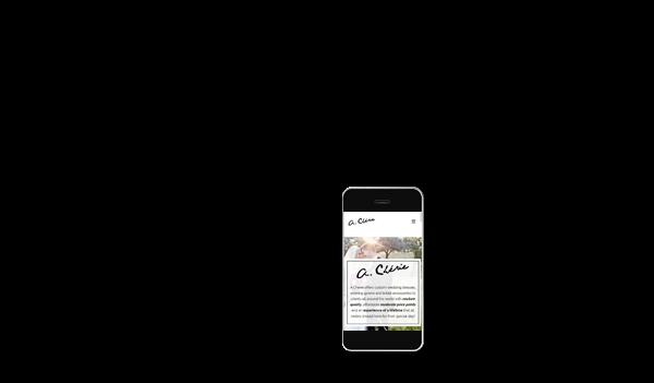 web phone focus acherie 041
